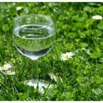 La conditionnalité des aides agricoles suffira t-elle à restaurer la qualité de l'eau ?