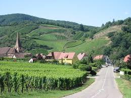 J'ai signé la pétition pour l'avenir de l'Alsace
